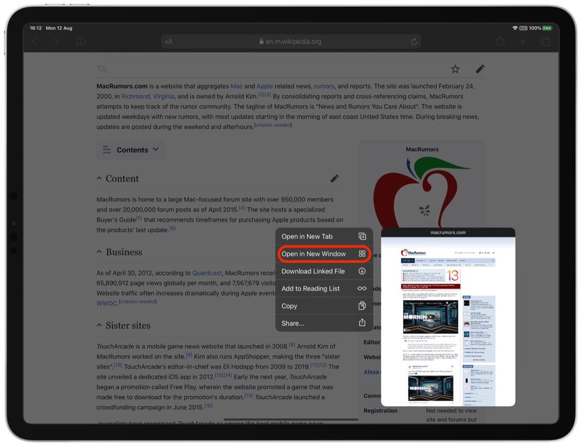 如何在 iPadOS 上通过 Safari 中的链接在新窗口中打开?