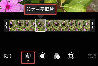 iPhone 11/11 Pro 编辑实况照片的三个小技巧