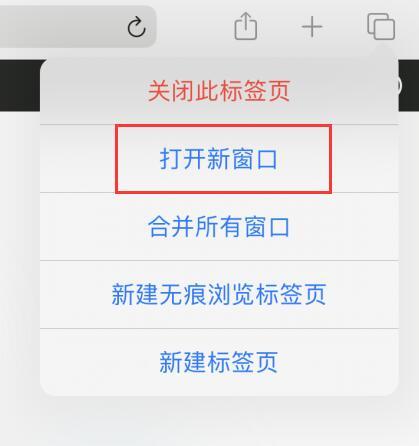 iPadOS 小技巧:如何在 iPad 上使用分屏功能?