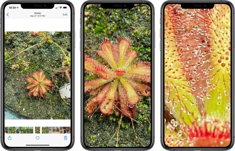 iOS 14 新变化:支持进一步放大照片
