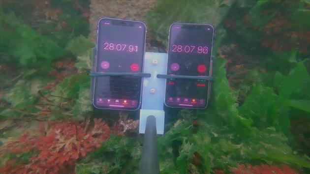 苹果 iPhone 11 极限防水测试:浸水 8 个月仍可正常运行