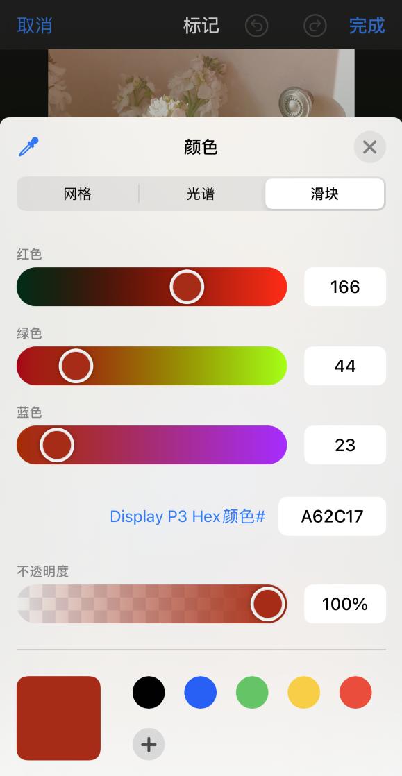iPhone 12 如何在照片上涂鸦?