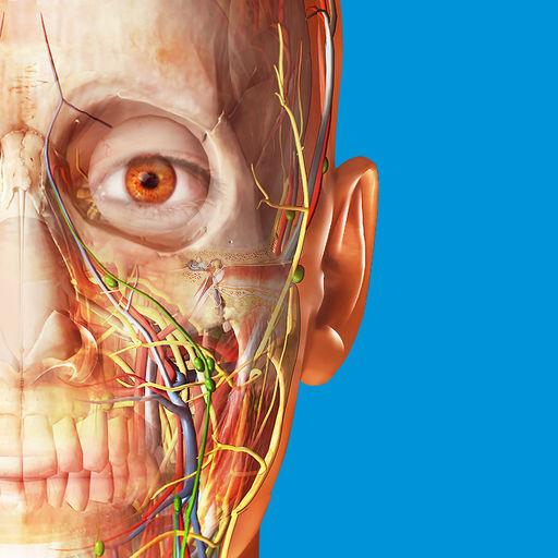 2017版人体解剖学图谱