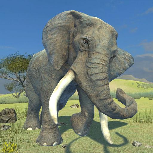 Clan of Elephants