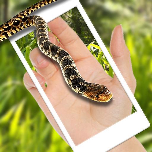 蛇在屏幕上
